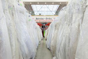 Run_of_the_BridesIMG_5307.jpg