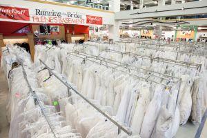 Run_of_the_BridesIMG_5309.jpg